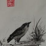 SPERLING, 2013, Tusche auf Japanpapier, 30*22cm